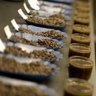 We bring samples from every batch into our cupping room to make sure the taste is up to our standards.